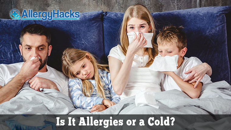 Allergies-or-Cold