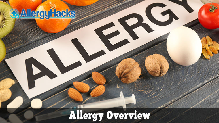 Allergy Overview